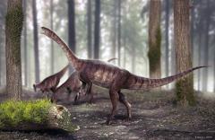 Descubren en Brasil el dinosaurio de cuello largo más antiguo del mundo
