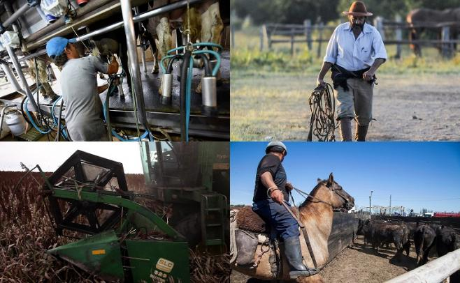 Análisis de la evolución salarial en el sector rural