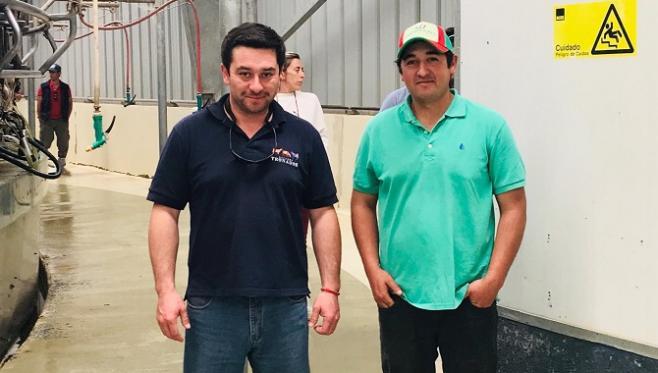 En Chile el productor lechero recibe entre 29 y 40 centavos de dólar por litro remitido