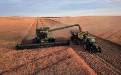 Dado la falta de combustible, el agricultor opta por la cosecha de trigo y cebada por sobre la siembra de soja