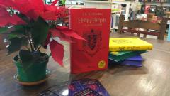 Elogio de Harry Potter