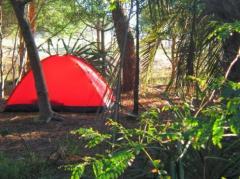 Declarará ante la Fiscalía uno de los presuntos violadores de la mujer en camping de Valizas