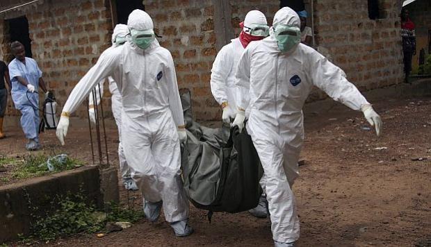 Brote de ébola causó más de 460 muertes