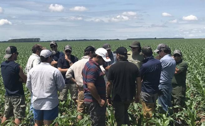 Agricultores locales recorren la zona núcleo para la agricultura, y monitorean distintas alternativas de la oleaginosa