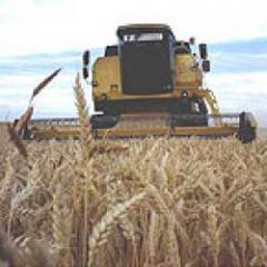 Tertulia Agropecuaria: la expansión agrícola